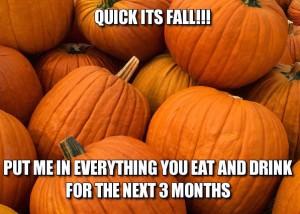 fall-meme-4