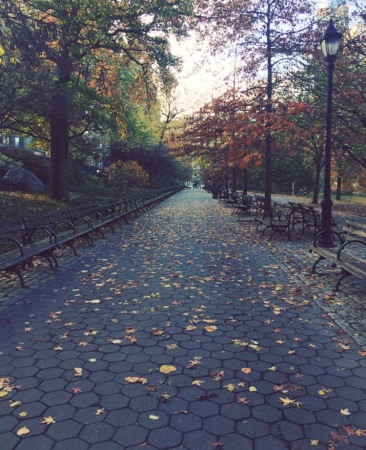 NYC Riverside Park